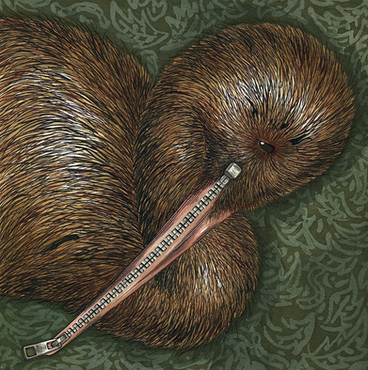 Kiwi reserve