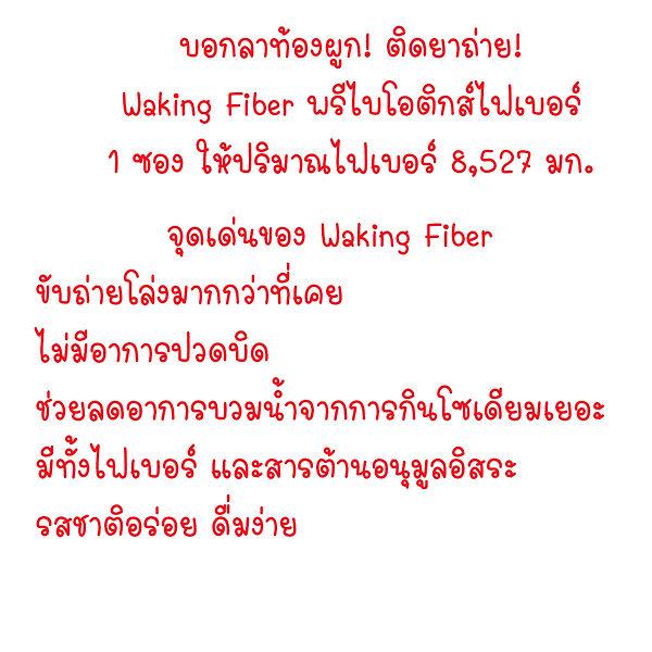 wk01.jpg