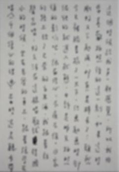 p913.jpg
