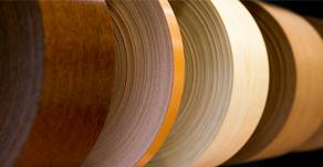 O mundo da Balbino & Faustino é feito de madeira