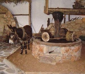 Cretan Olive Farm Agios Nikolaos
