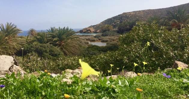 Pentecost picnic in Erimoupolis, Eastern Crete.