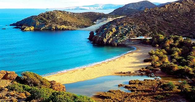 East Crete Vai Palm forest.