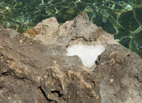 Sea Salt from Kalo Nero, East Crete.