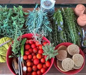 Votania Herb Garden Crete