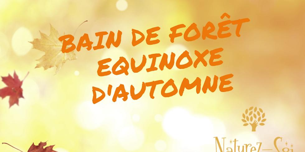 Bain de Forêt - Equinoxe