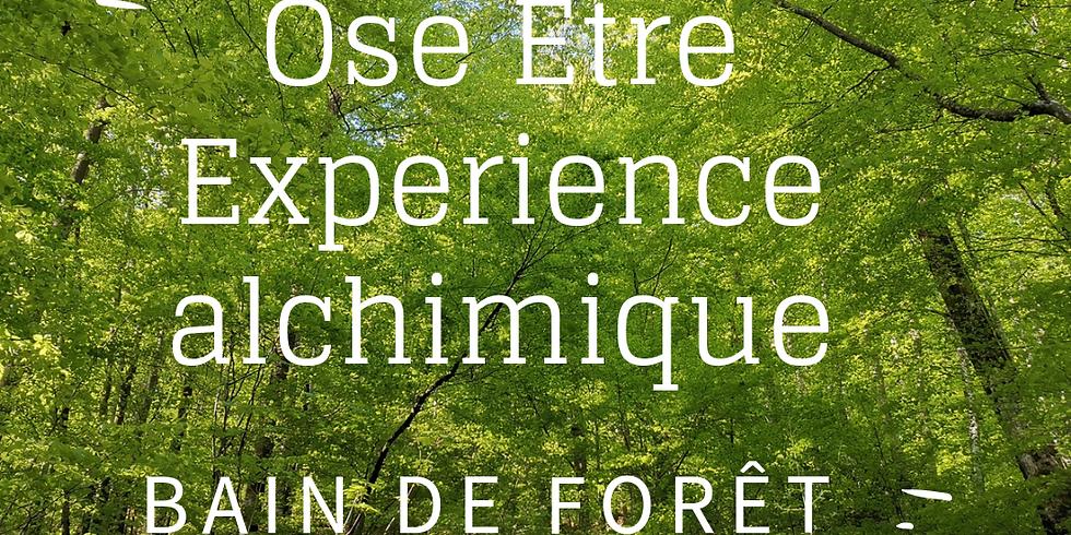 Ose Être-Experience alchimique - Bain de Forêt