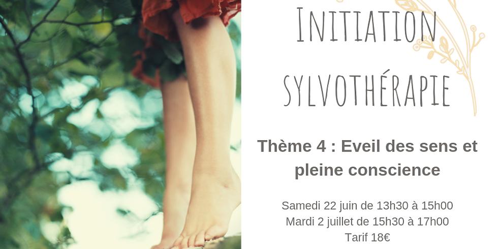 Initiation à la sylvothérapie - Eveil des sens et pleine conscience (2)
