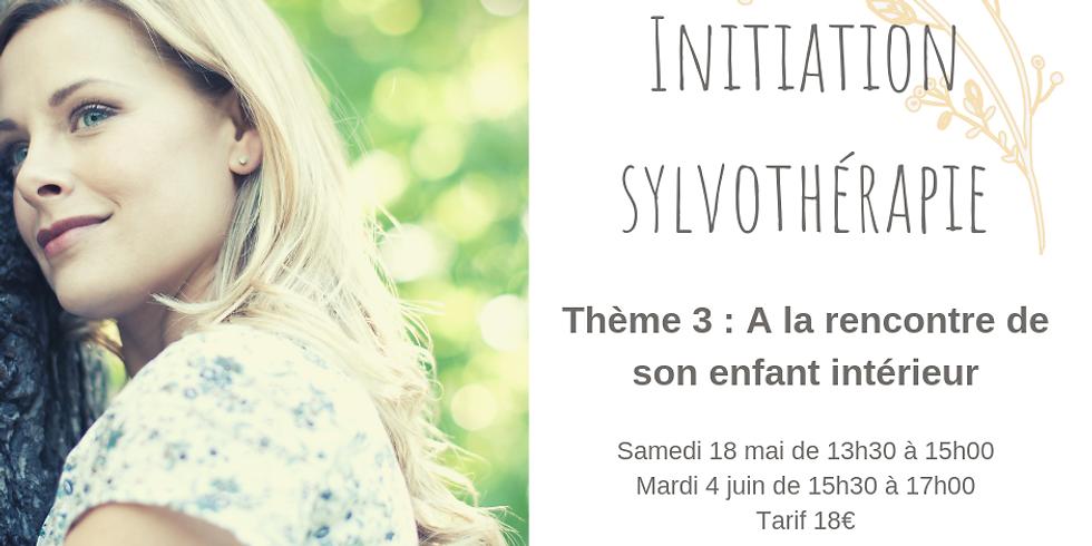 Initiation à la sylvothérapie - A la rencontre de son enfant intérieur. (2)