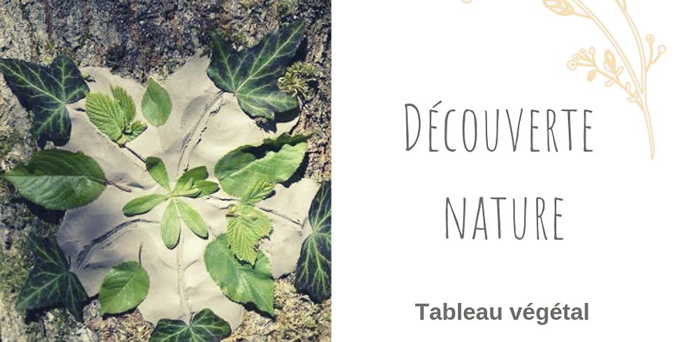 Découverte Nature  - Tableau végétal