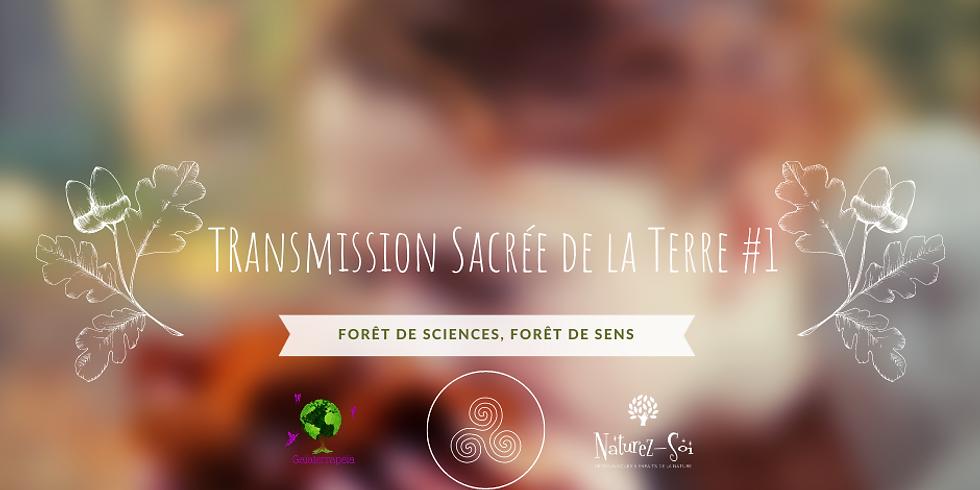 Transmission sacrée de la Terre #Forêt de sciences, forêt de sens