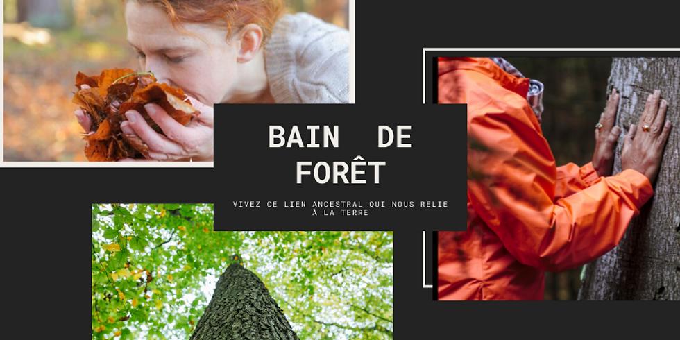 Bain de Forêt - Moselle