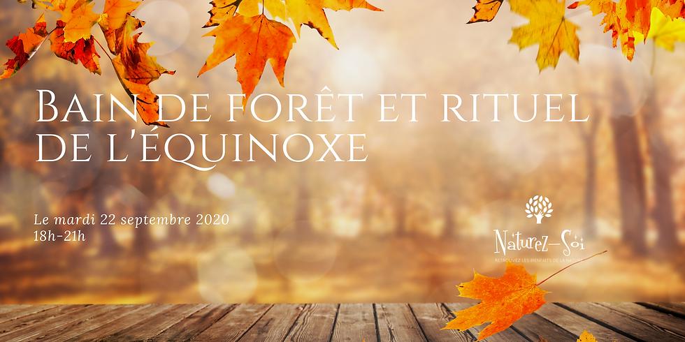 Bain de forêt et rituel de l'équinoxe