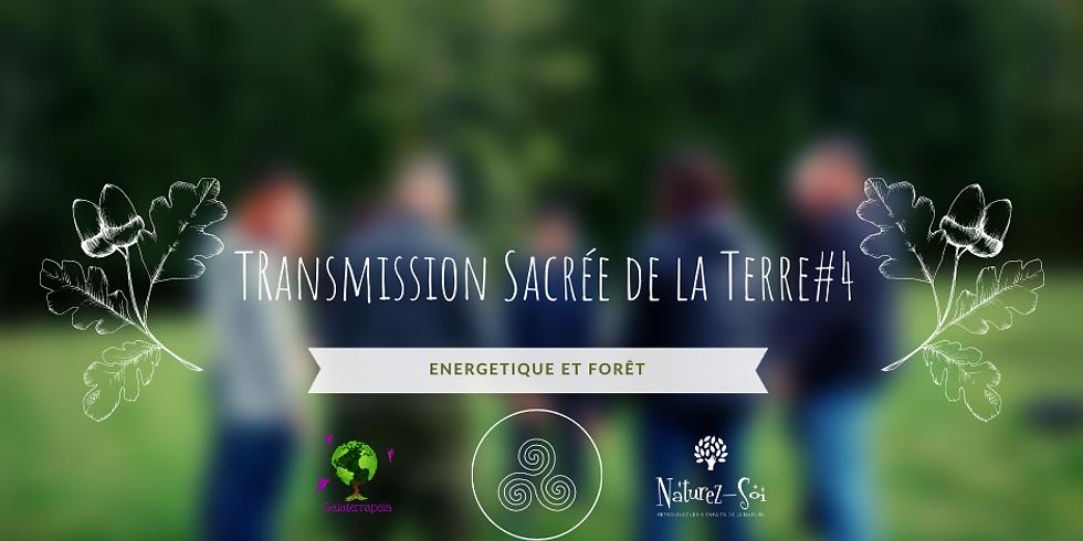 Transmission sacrée de la Terre - Energétique et Forêt