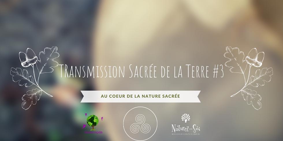 Transmission sacrée de la Terre #3 Au coeur de la nature sacrée