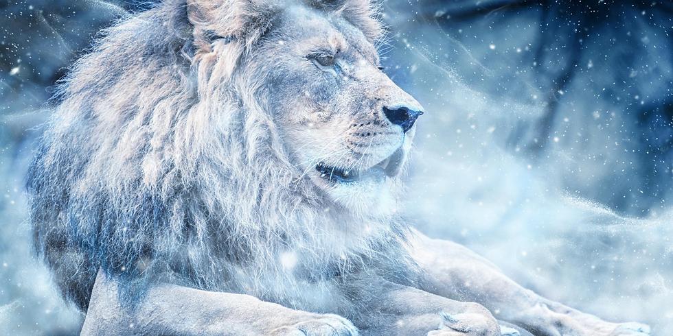 Séance énergétique du portail du Lion