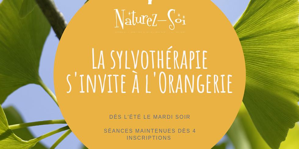 Bain de nature à l'Orangerie (1)