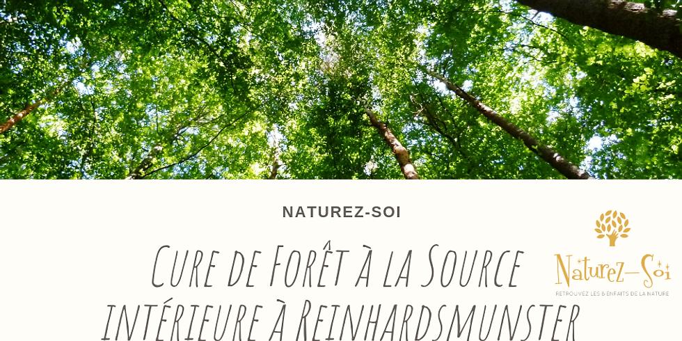 Cure de Forêt