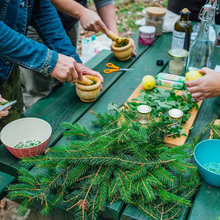 Sylvothérapie et cuisine en forêt, au coeur des traditions ancestrales