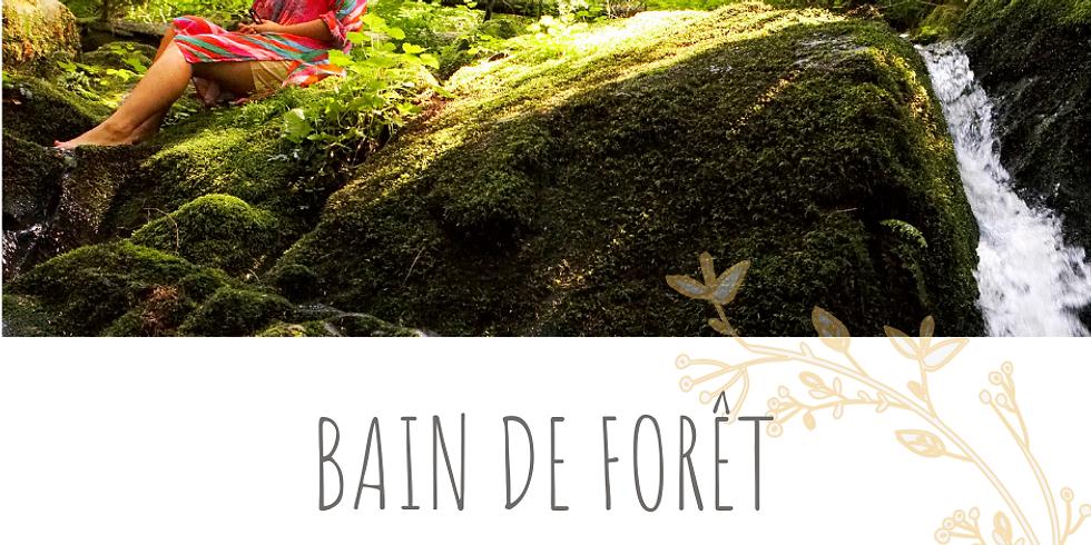 Bain de Forêt - Eveil des sens