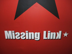 Missing Link writing