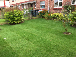 LTC Northeast England Turf and Tidy