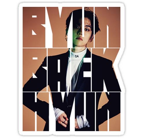 EXO Baekhyun 'Monster'  SSTK100 K-Pop Music Brand Car Window Decal Sticker
