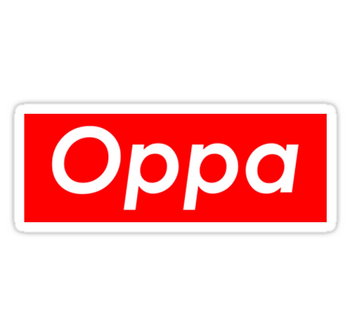 Oppa SSTK011 K-Pop Music Brand Car Window Decal Sticker