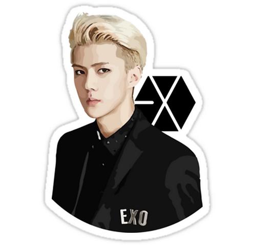 EXO - Sehun SSTK063 K-Pop Music Brand Car Window Decal Sticker