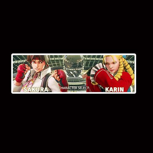 Slap Stickers Anime Stickers Decals Helmet laptops SLSF28 Street Fighter Game