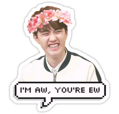 Do Kyungsoo (D.O) - EXO SSTK062 K-Pop Music Brand Car Window Decal Sticker