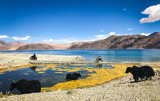 Ride Expeditions Motorcycle Tours-2.jpg