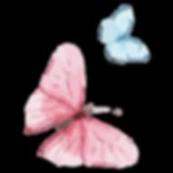 Mariposa acuarela 14