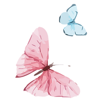 Blue and Pink Butterflies