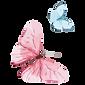 Acquerello Farfalla 14
