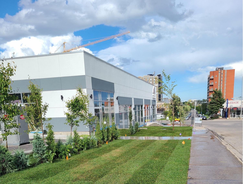 Vet Clinic-1 4x3 landscape