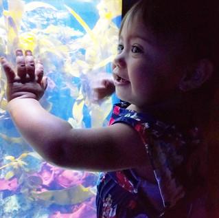 Cali Moms' Summer Must Stop: Aquarium of the Pacific
