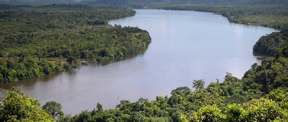 Skovbeskyttelse, Brasilien