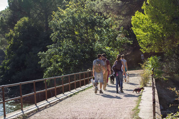 Ruta Embalse de Picadas ORIGEN CANINO (2