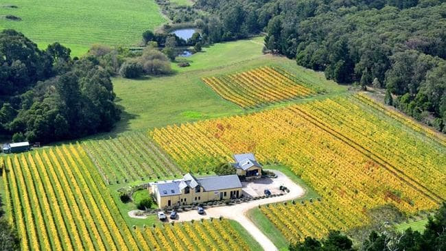 A large home and farm surrounded by a field of vineyards and trees beyond them.