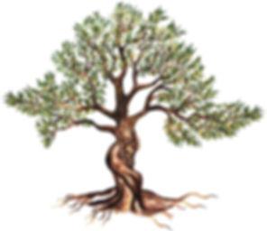 Tree Ranch Logo.jpg