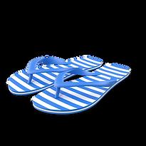 Flip-flops.G11.2k.png