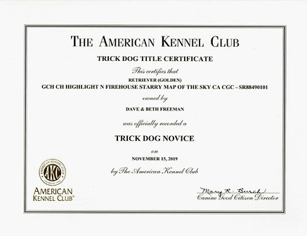 ATLAS' TRICK DOG NOVICE CERTIFICATE.jpg