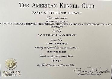 Jazzy FCAT3 certificate (2).jpeg
