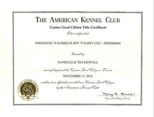 Daisy Bee Good Citizen Certificate