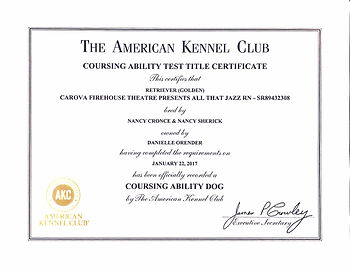 JAZZY'S COURSING ABILITY DOG CERTIFICATE