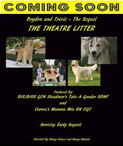 Announcement Brydon & Trixie The Theatre