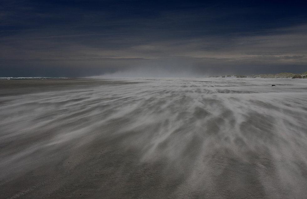 Sand%20Storm%20_edited.jpg