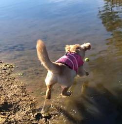 Bristol practicing her diving