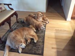 Firehouse Crew waiting for dinner. . .